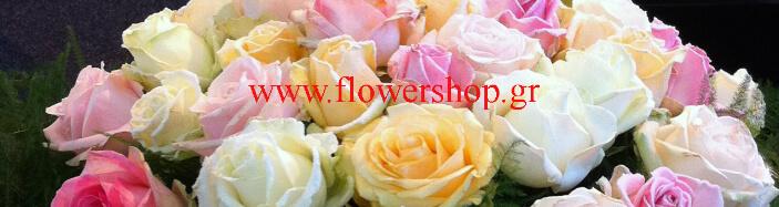 (41) Τριαντάφυλλα Διάφορα Χρώματα Προσφορά