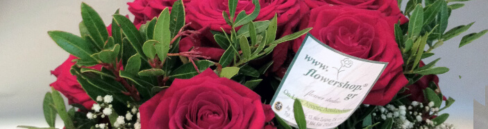 (21) Κόκκινα Τριαντάφυλλα Προσφορά