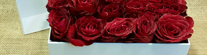 "Roses ""VIP"" in decorative box. (24) heads."