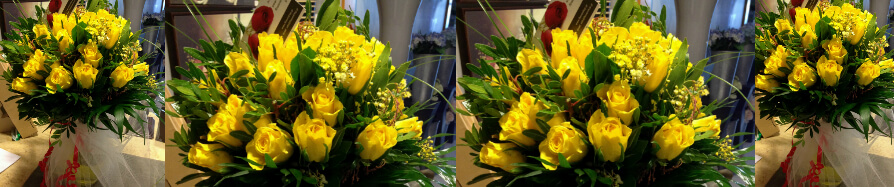 (31) yellow roses A' quality Dutch in vase with greens
