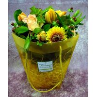 Yellow Flowers in water bag