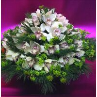 Cymbidium or phalaenopsis  orchids in basket