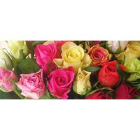 (31) Mixed colors roses bouquet with greens. Smash week offer