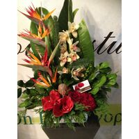 Christmas Arrangement with tropical flowers in parallel lines.
