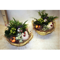 Easter Decorated Plants In Basket !!!