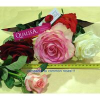 Big headed ecuadorian roses bouquet (11 stems) with greens !!!