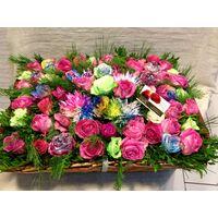 """Κήπος με πανέμορφα λουλούδια """"Ουράνιο Τόξο"""""""