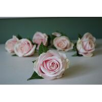 Pink or White Roses (40) stems.Super Week Offer