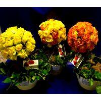 Μπάλα από τριαντάφυλλα (40) τεμ. σε κορμό Μπονσάι