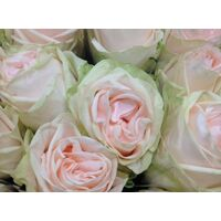 "Exclusive ""Wedding favorites""  Roses Arrangement"