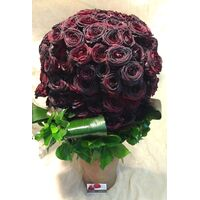"Exclusive ""Black Roses"" Bouquet (150) Ecuador roses"