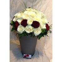 (50) white + red !!! roses Extra Quality Bouquet !!!