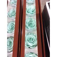 Τριαντάφυλλο βαλσαμωμένο σε σύνθεση.