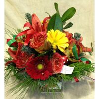 Christmas red flowers basket.