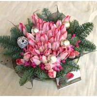 Christmas Tulips. Exclusive!!!