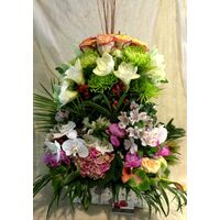 Darling this exclusive arrangement is for you !!! Flower Power !!!