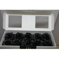 (10) Exclusive Black Waxed  Roses In Vase Arrangement!!! NEW!!!