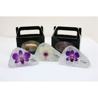 Exclusive Dendrobium Orchid Flower In Crystal !!! New!!!