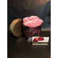 "Roses Preserved in decorative  10 cm χ 10 cm  ""Divine  Hatbox"". (4) heads."