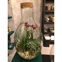 """Σύνθεση Με Φυτά Σε Μεγάλο Γυάλινο """"Drop (σταγόνα)"""" Βάζο Διαμ. 25εκ & Ύψος 55εκ. Με εσωτερική διακόσμηση. Εξαιιρετικό και Πανέμορφο Δώρο."""