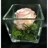 Rose Big Head (6cm)  (preserved) In Arrangement with decoration.