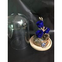 Roses Forever,  σε Γυάλινο Θόλο Διαμ. 20εκ. Ύψος 30εκ. Συσκευασία Δώρου.  (Υποδείξτε το χρώμα της αρεσκείας σας στη φόρμα παραγγελίας) (3) Τεμάχια.