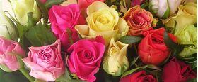 (31) Τριαντάφυλλα Μπουκέτο Διάφορα Χρώματα. Σούπερ Προσφορά εβδομάδας