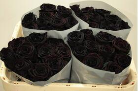 Μαύρα Τριαντάφυλλα Φυσικά (11) τεμ. Μαύρα Τριαντάφυλλα Φυσικά (21) τεμ. Black Baccara ! Ανθοδέσμη ή Μπουκέτο.Πολυτελές (Εμποτισμένα)