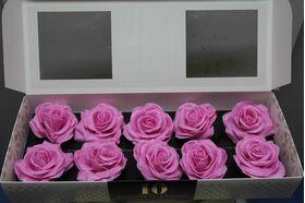 """(10) τριαντάφυλλα  με επικάλυψη """"Κεριού""""  Ροζ Σύνθεση σε Βάζο !!! ΝΕΟ !!!"""