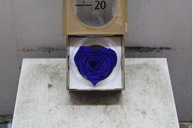 """Τριαντάφυλλο βαλσαμωμένο σε σύνθεση. Φυσικό μεγάλο κεφάλι (10 cm) επεξεργασμένο!!! Νέο Είδος !!! """"Σχήμα ΚΑΡΔΙΑΣ"""" Μπλε."""