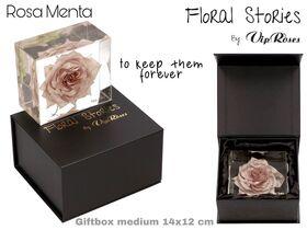 Vip Fossil Epoxy Menta. Exclusive Gift Box !!! Εποξειδικό Απολίθωμα !!!