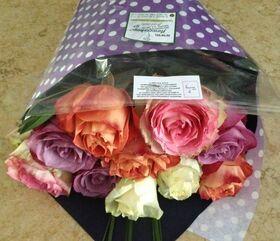 τριαντάφυλλα  ECUADOR