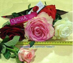 Ανθοπωλείο .Μπουκέτο με ecuador τριαντάφυλλα (11 τεμ.)