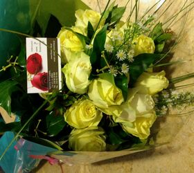 """(20) white roses A' quality Dutch """"Ice Bear"""" with greens gift wrapped."""