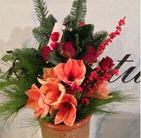 Christmas bouquet with amaryllis