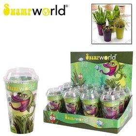 Φυτό σαρκοφάγο (διάφορες ποικιλίες/(3) φυτά σετ) σε γυάλινο βάζο ή κεραμικό ποτ με διακόσμηση !!! (Διωναία κ.α)