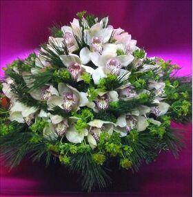 Cymbidium or phalaenopsis  orchids in basket
