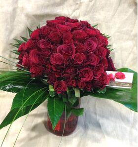 (101) Κόκκινα Exclusive Dutch Roses 50cm σε βάζο.Σπέσιαλ.