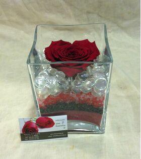 """Τριαντάφυλλο βαλσαμωμένο σε σύνθεση. Φυσικό μεγάλο κεφάλι (10 cm) επεξεργασμένο!!! Νέο Είδος !!! """"Σχήμα ΚΑΡΔΙΑΣ"""" Ιδιαίτερο."""