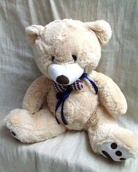 Teddy bear  60cm X-Large