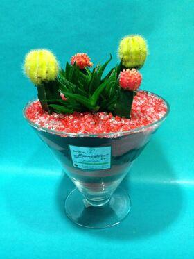 Gymnocalysium Cactus  Σύνθεση  σε γυάλινο  σκεύος με χρωματιστή διακοσμητική άμμο !!!