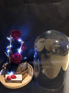 """Ανθοπωλείο. (4) Βαλσαμωμένα """"4ever"""" τριαντάφυλλα σε """"Γυάλινο Θόλο"""" Διαμ 17εκ. χ 24εκ. + leds (special)"""