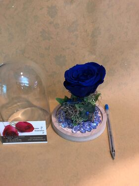 """Τριαντάφυλλο βαλσαμωμένο (1) Τεμ. σε σύνθεση. """"Η Πεντάμορφη & Το Τέρας """" Σπέσιαλ."""