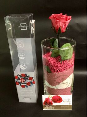 """""""Preserved rose"""" In """"Decorative  Glass Vase""""  With Decorative Colored Sand (1) Pc.Random Colors (or state your color preference)"""