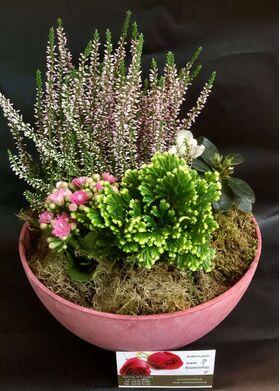 """Σύνθεση με Φυτά Σε Ποιοτικό """"Artstone Pot""""."""