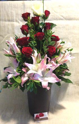 Λουλούδια Λευκά & Κόκκινα σε ποιοτικό κεραμεικό ποτ.