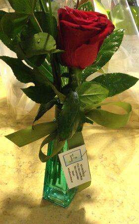 """""""ΈΝΑ"""" τριαντάφυλλο  σε βάζο ή ποτ"""