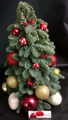 Χριστουγεννιάτικο Δένδρο (Σύνθεση από Έλατο Abies Nobilis) 50-60εκ. Διακοσμημένο.